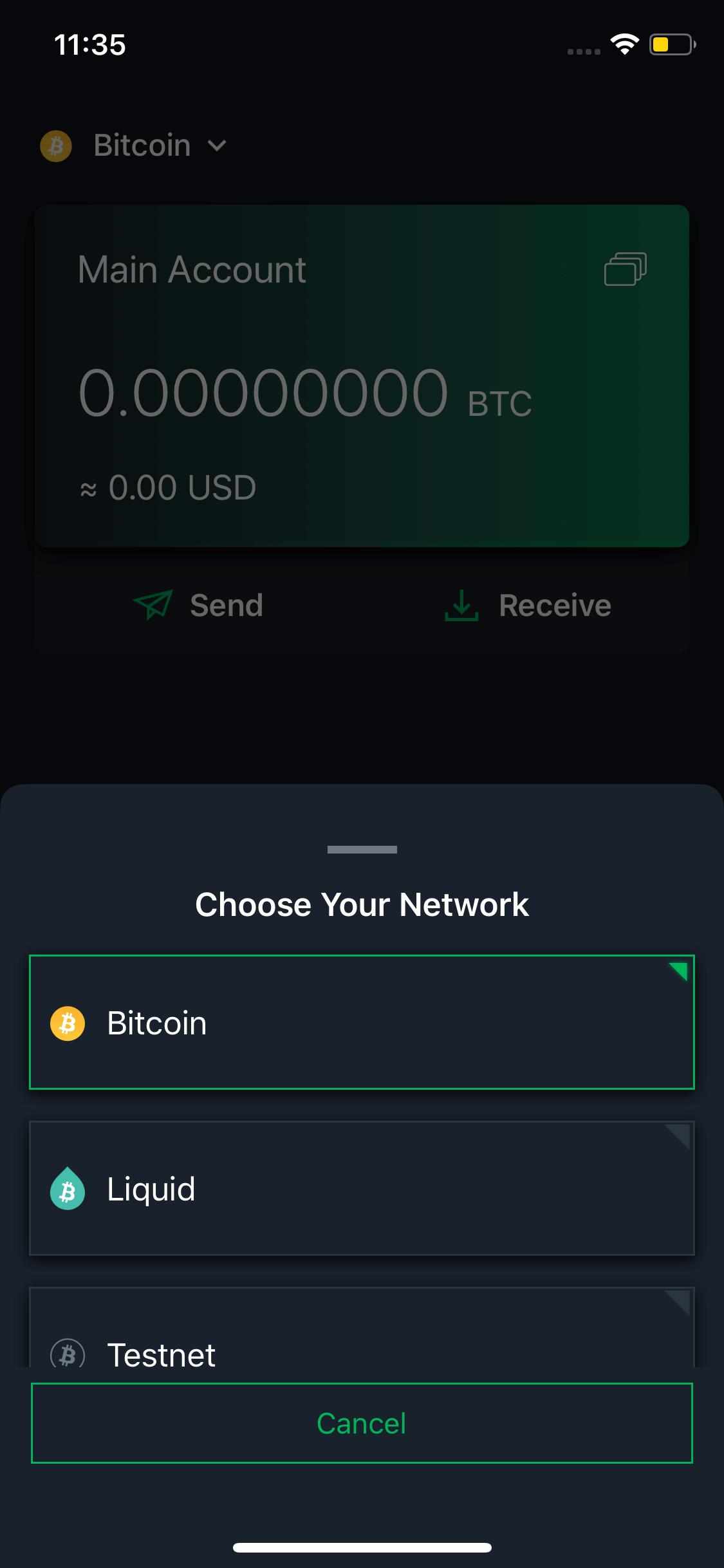 Blockstream Green screen 3